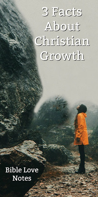 3 Factors in Christian Growth