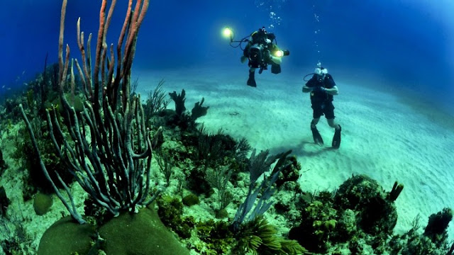 Τα ναυάγια είναι το δυνατό σημείο της Ελλάδας στον καταδυτικό τουρισμό