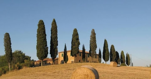 Our guide to Tuscany