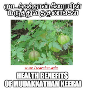 http://www.1searcher.asia/2016/08/mudakathan-keerai-benefits-in-tamil.html