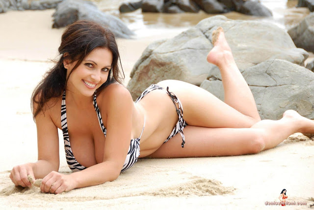 Denise Milani Beach Zebra HD Sexy Photoshoot Hot Photo 27