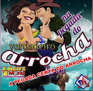 cd hits sertanejo 5.0 as melhores de 2012
