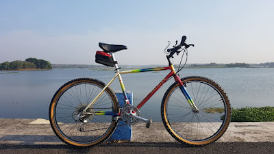 Colnago MTB Review