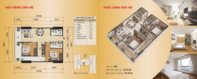 Thiết kế căn hộ Gemek Premium
