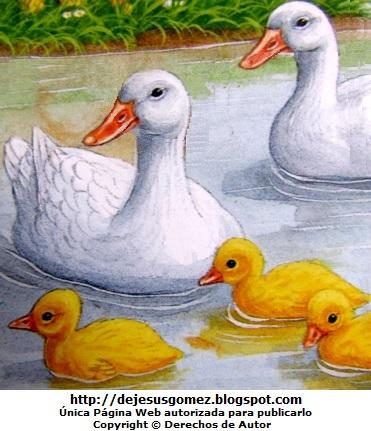 Mamá Pata con sus crías bebés. Imagen de patos de Jesus Gómez