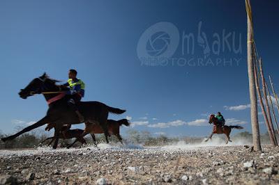 Pacuan kuda NTT