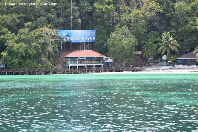 BEER, BEACH AND THE BLACKTIP REEF SHARKS OF PULAU PAYAR MARINE PARK
