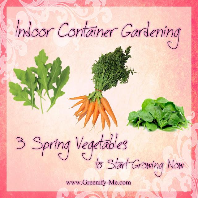 Indoor container gardening spring vegetables