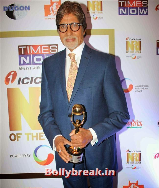 Amitabh Bachchan, Monali Thakur, Pooja Bedi, Amitabh  NRI of The Year Awards 2014