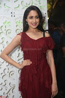 Pragya Jaiswal in Stunnign Deep neck Designer Maroon Dress at Nakshatram music launch ~ CelebesNext Celebrities Galleries 081.JPG