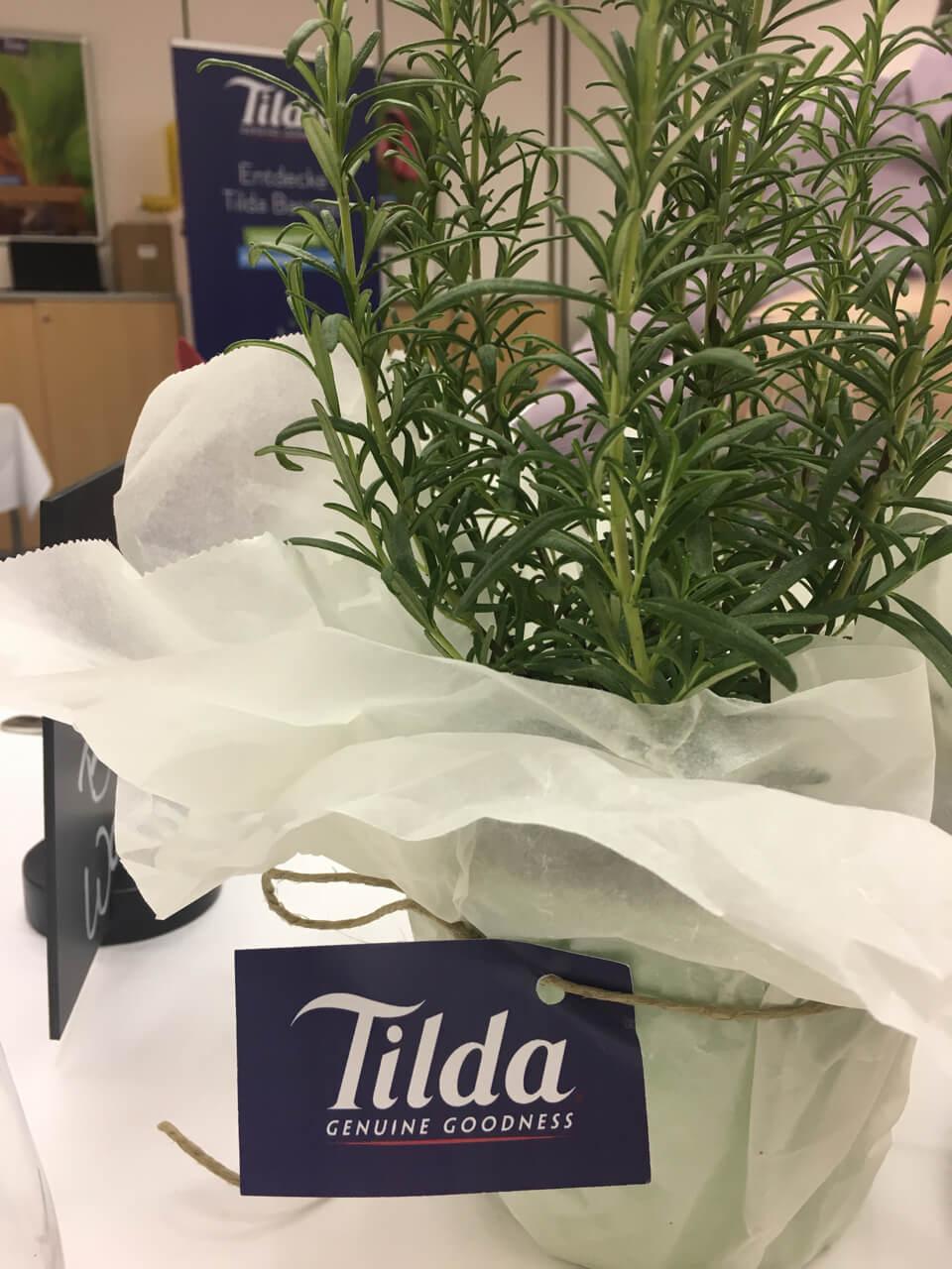 Tilda Reis Blogger Kochworkshop im Modul
