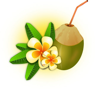 khasiat minum air kelapa muda untuk ibu yang sedang hamil