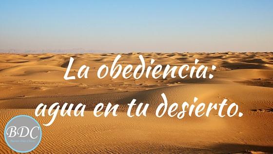Obediencia, uno de los temas del estudio de Deuternomonio que estamos leyendo. Los israelitas pareciera que no lo entienden...¿y tú?