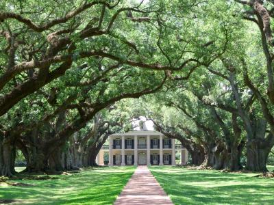 Travel Lust: Savannah, Georgia ~ Inside My Present