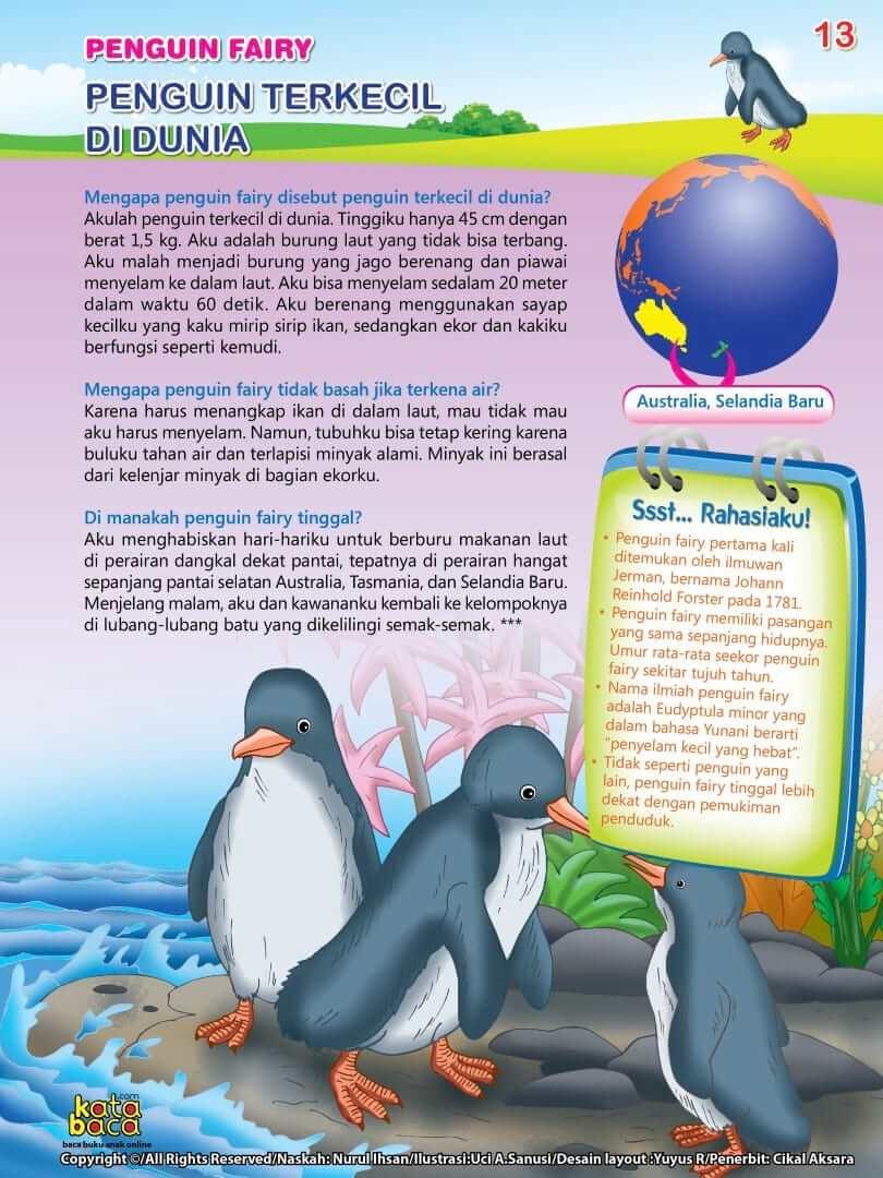 Burung Penguin Fairy - Burung Terkecil di Dunia