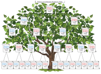Genealogický stromový diagram předků - šablona
