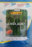 budidaya timun, cara menanam timun, benih bibit timun, jual benih murah, lmga agro