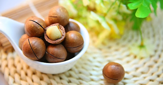 7 Healthy Reasons to Eat Macadamia Nuts