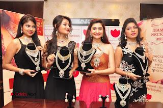 Manepally Jewellery Exclusive Diamond Collection Launch  0034.JPG