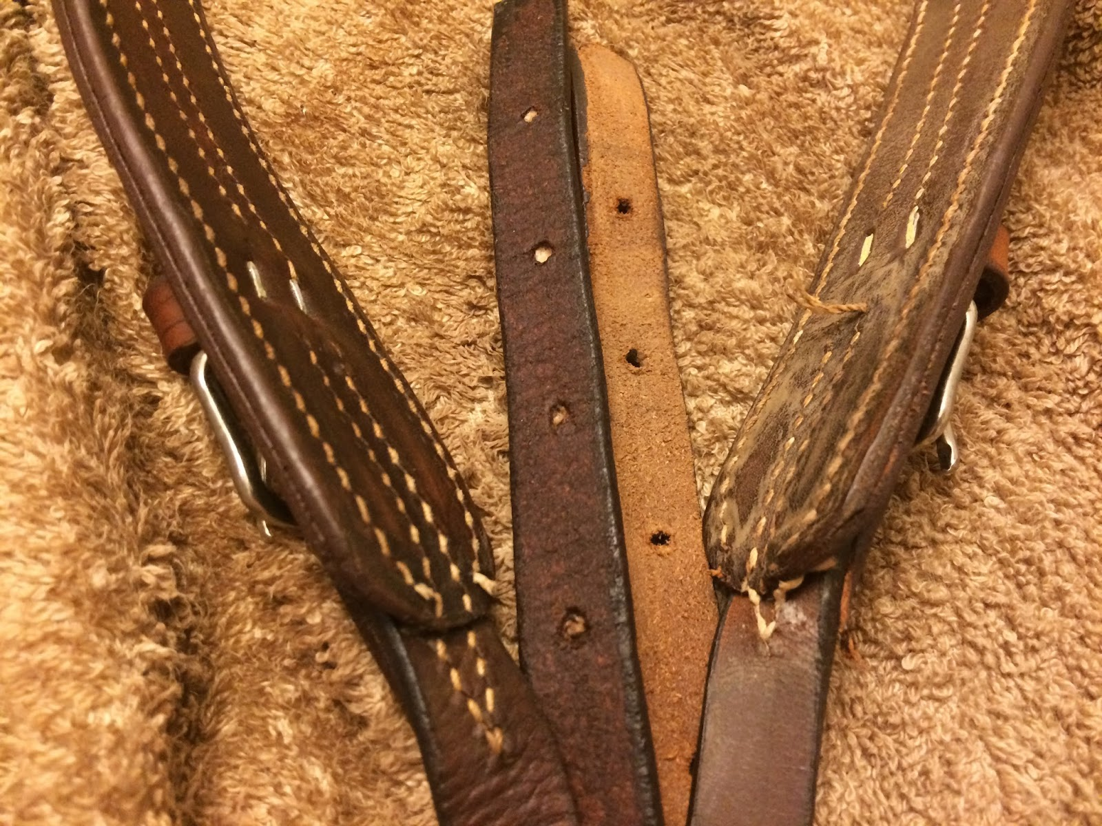 Review: Higher Standards Leather Care – DIY Horse Ownership