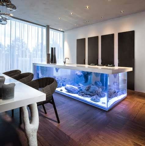 ocean kitchen aquarium island