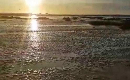 PERU – Em Huacho o Mar Recua 100 Metros, Moradores esperam pelo Pior (VÍDEO)