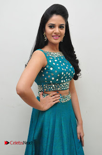 Sree Mukhi Pictures at Gentleman Audio Launch  0043.JPG