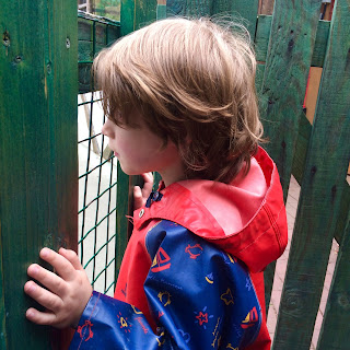 Dare I think about my autistic son's future? David looks through a fence