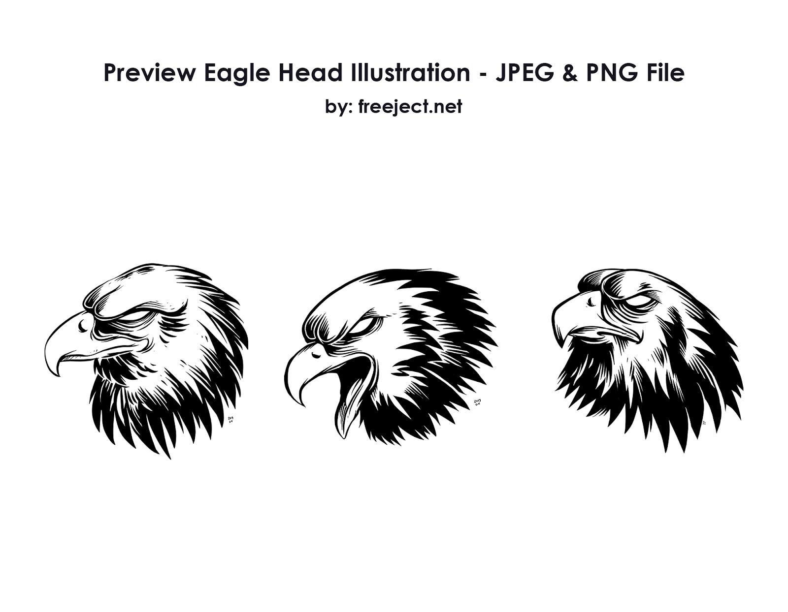 Free Download Eagle Head Illustration