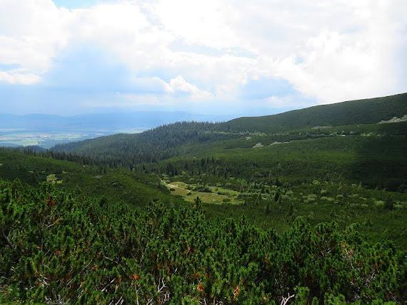 dolina wielicka
