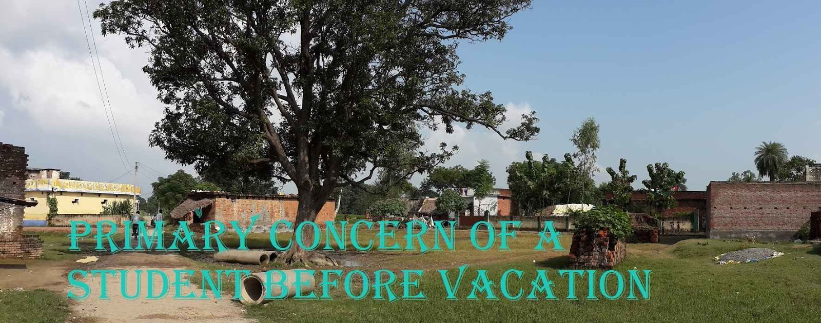 Types of vacations essay