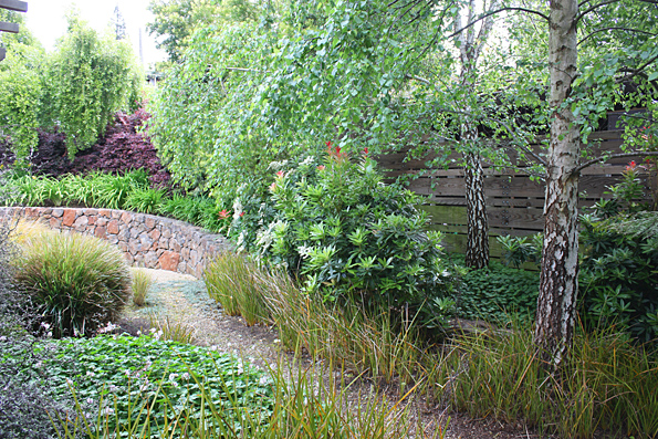 amenajare curte pomi, arbori, vegetatie luxurianta, gradina de umbra plante de umbra peisagist firma proiectare gradina design modern teren in panta