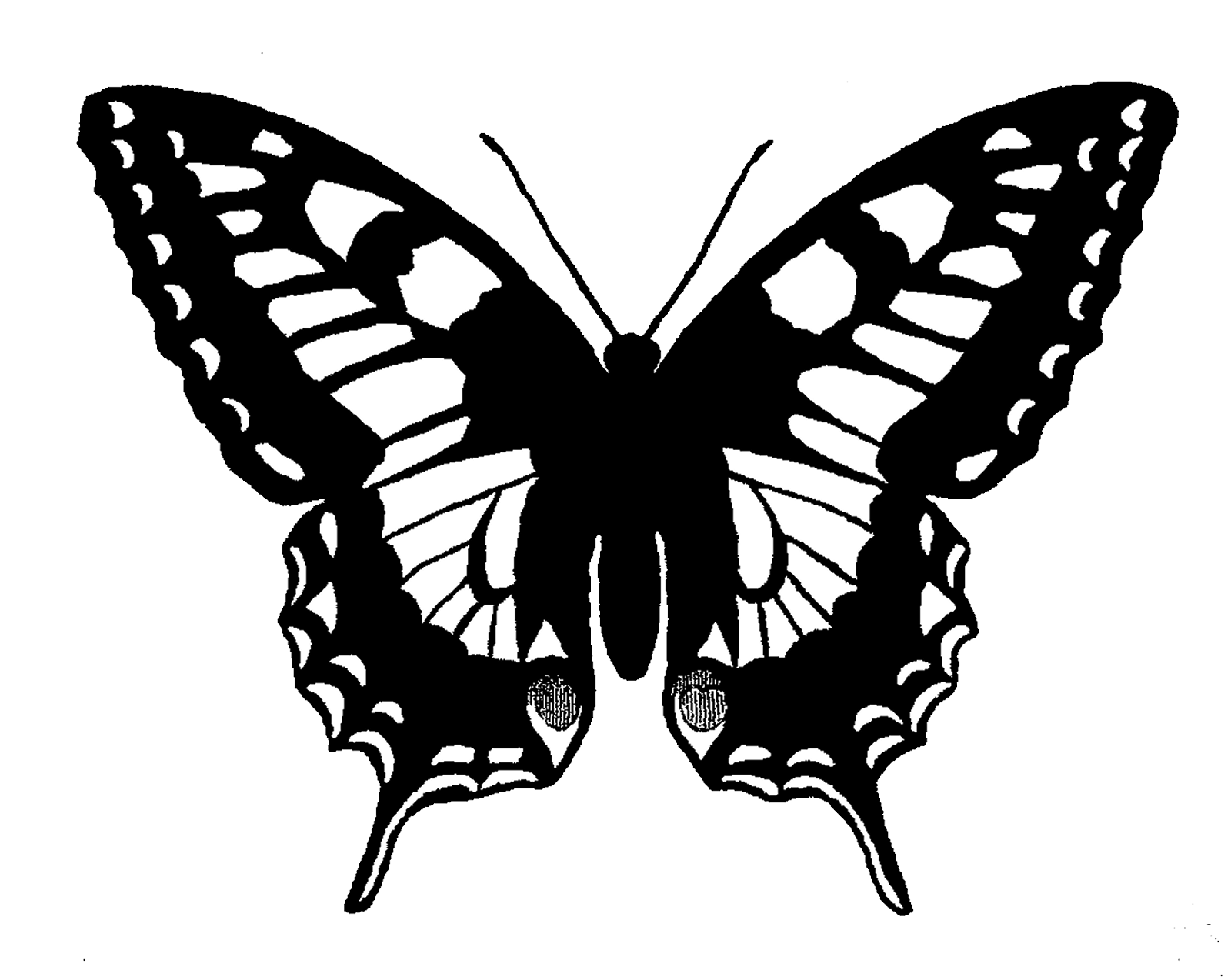 The Graphics Monarch: Free Butterfly Silhouette Image ...