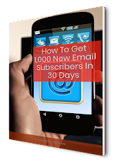 FREE Guide - 1000 New Email Subscribers in 30 Days - Secrets Revealed That The Gurus Don't Tell You