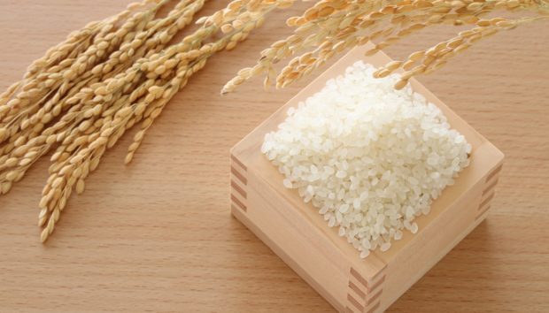 Δοχείο Με Ρύζι