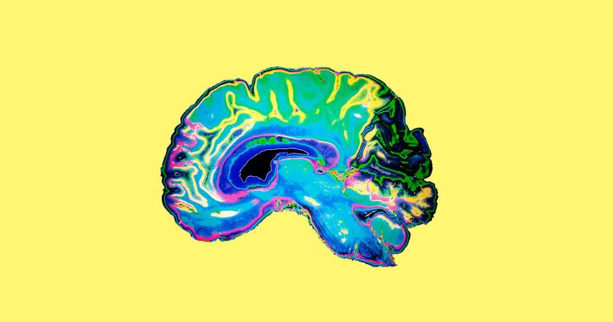 TEST INTELIGJENCE: A Mund Ti Përgjigjeni Saktë Pyetjeve Të IQ?