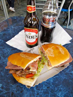 Hamburger from Argentina Andes Mountains