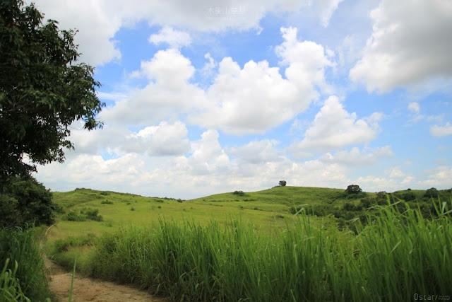 木架山草原