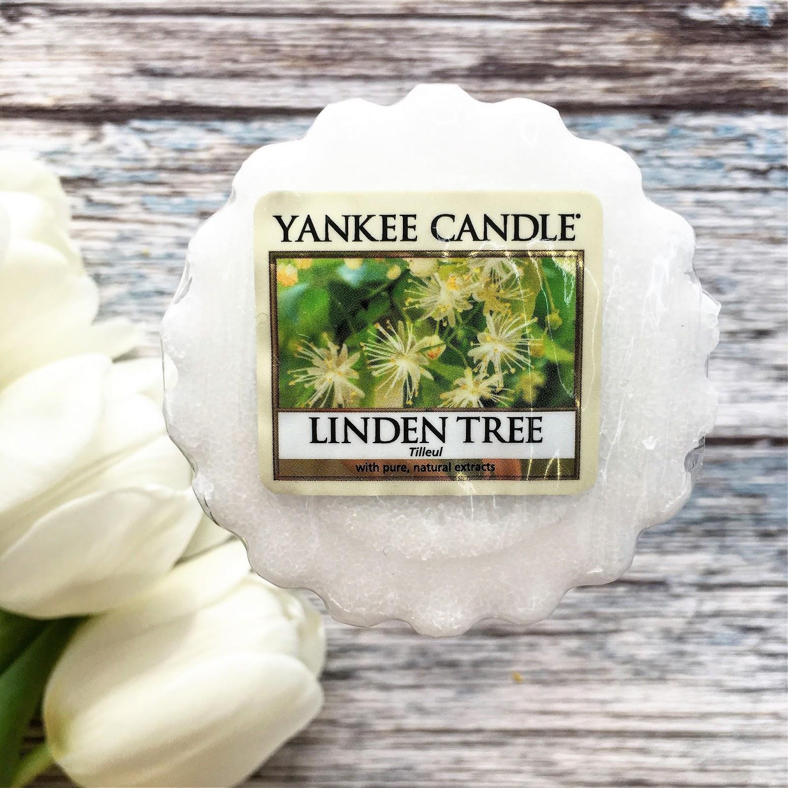 Pierwszy powiew wiosny na blogu: wosk Linden Tree z kolekcji wiosennej Yankee Candle