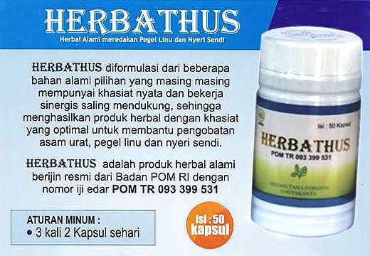 Herbathus diekstrak dari ramuan Temu Putih, Pegagan dan Meniran