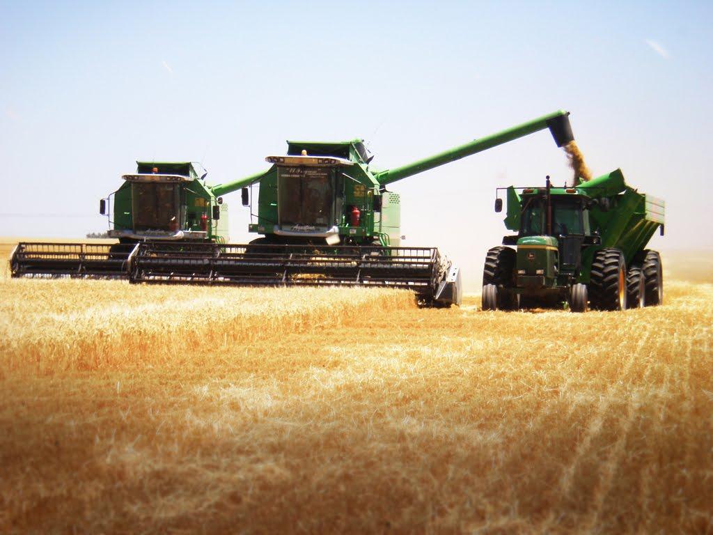Resultado de imagen para cosechadora en el campo