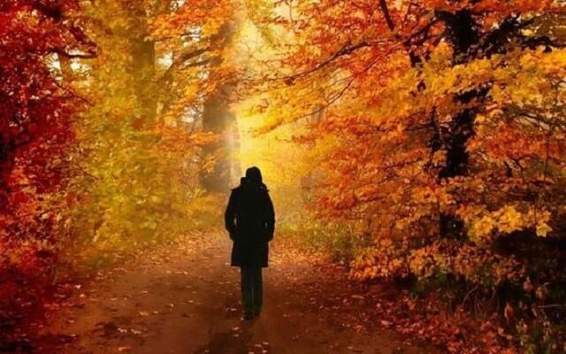 Yürümek-terapidir