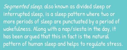 Divided sleep theory