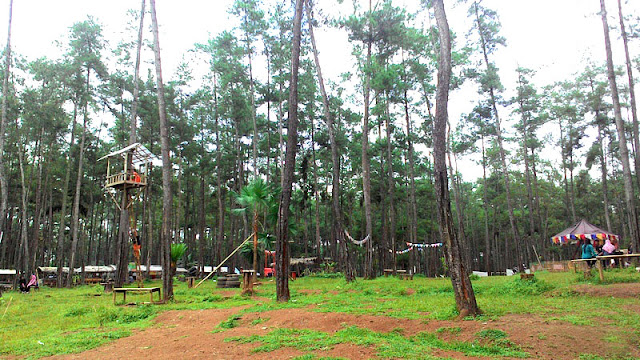 wisata-hutan kemit-yang-aduhai-di-cilacap-jawa-tengah_140706