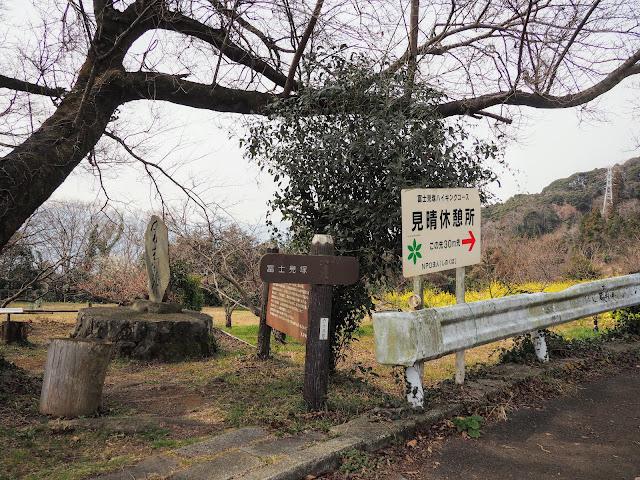 篠窪 富士見塚