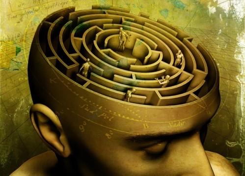 """Résultat de recherche d'images pour """"labyrinthe cerveau image"""""""