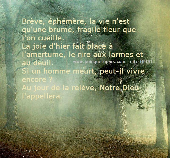 Puisque Tu Pars Texte De Condoléances Avec Image Deuil