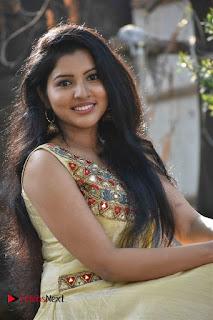 Actress Nayana Nair Stills in Long Dress at Arasakulam Tamil Movie Audio Launch  0005.jpg