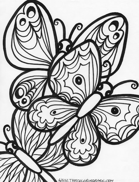 Printable Butterfly Coloring Pages With Butterflies And On Pinterest Free