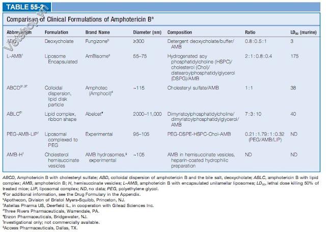 Bảng 2: So sánh các công thức của Amphotericin B